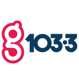 G103.3
