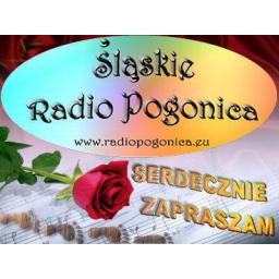Radio Pogonica