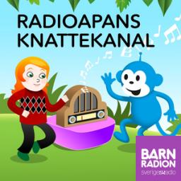 SR Radioapans Knattekanal